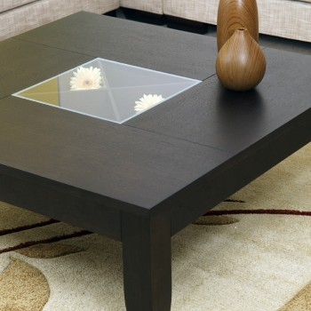 COFFEE TABLE WITH ALITTLE VITRINE